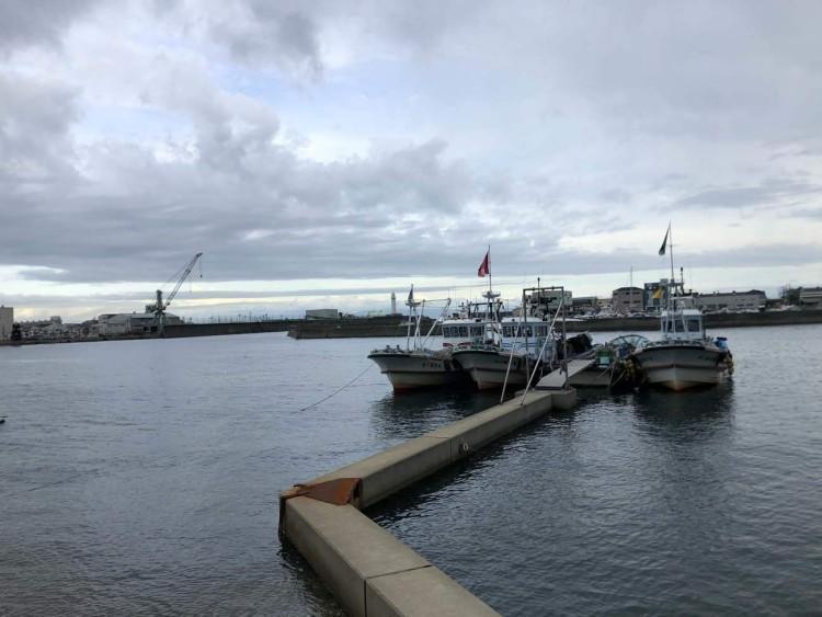 クラフトふじい港